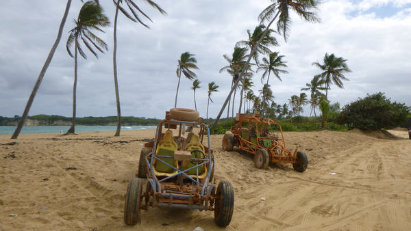 Xtreme-Buggy Adventures - charming tropical views - Punta Cana, Dominican Republic