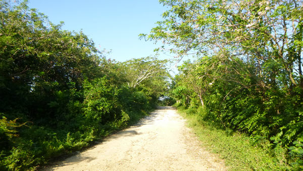 Come with us on pleasurable Xtreme-Buggy tour, driving on bumpy roads of Punta Cana countryside